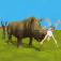 Rhino Simulator Pro